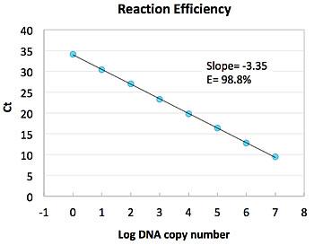 Blaze Reactionefficiency 2
