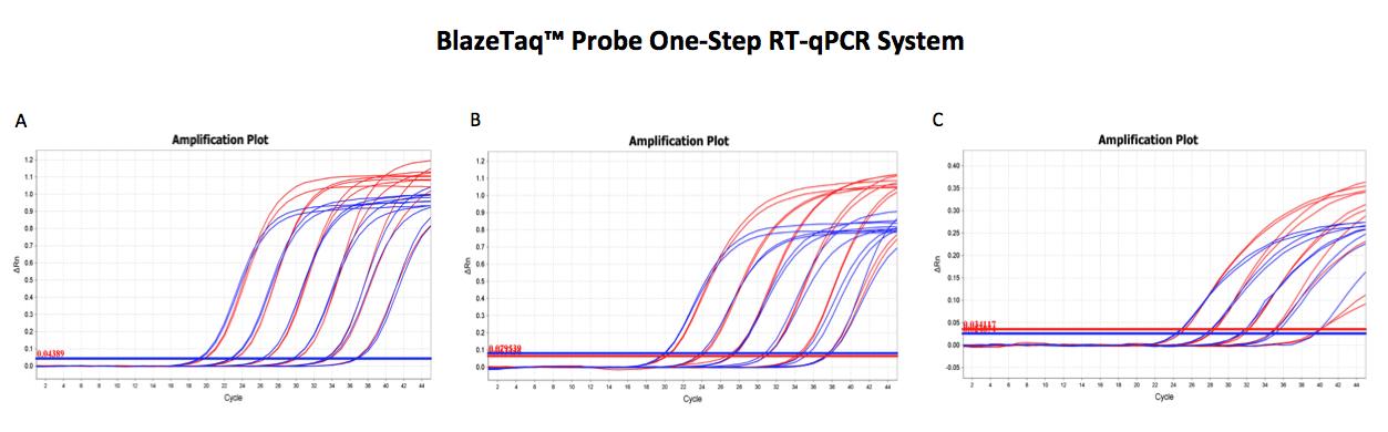 Blazetaq Probe One Step Amplification