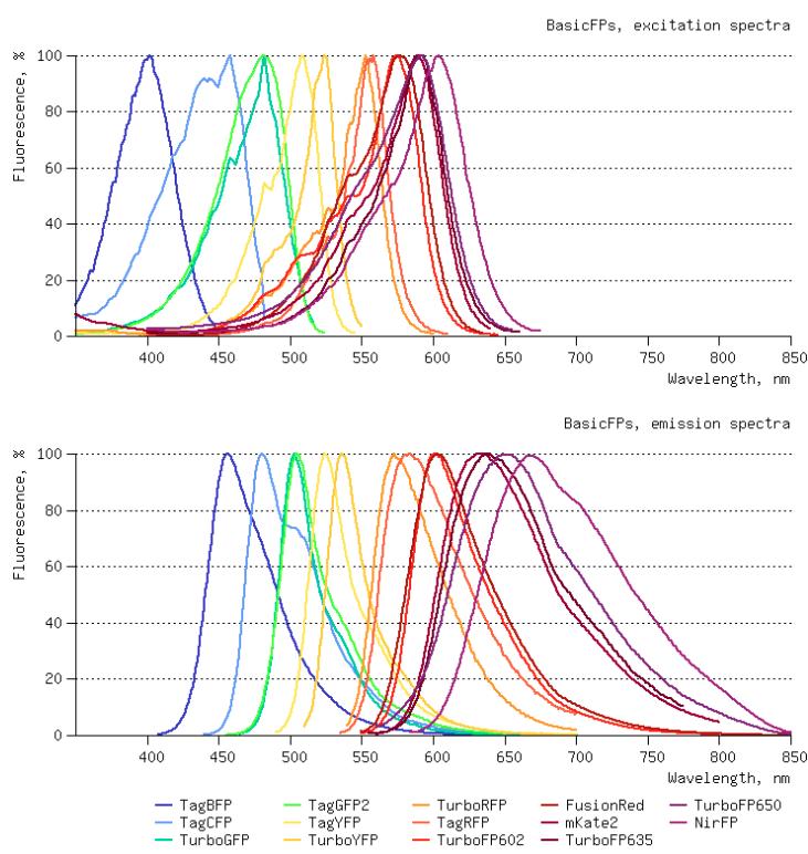 Fluorescent Proteins Spectra