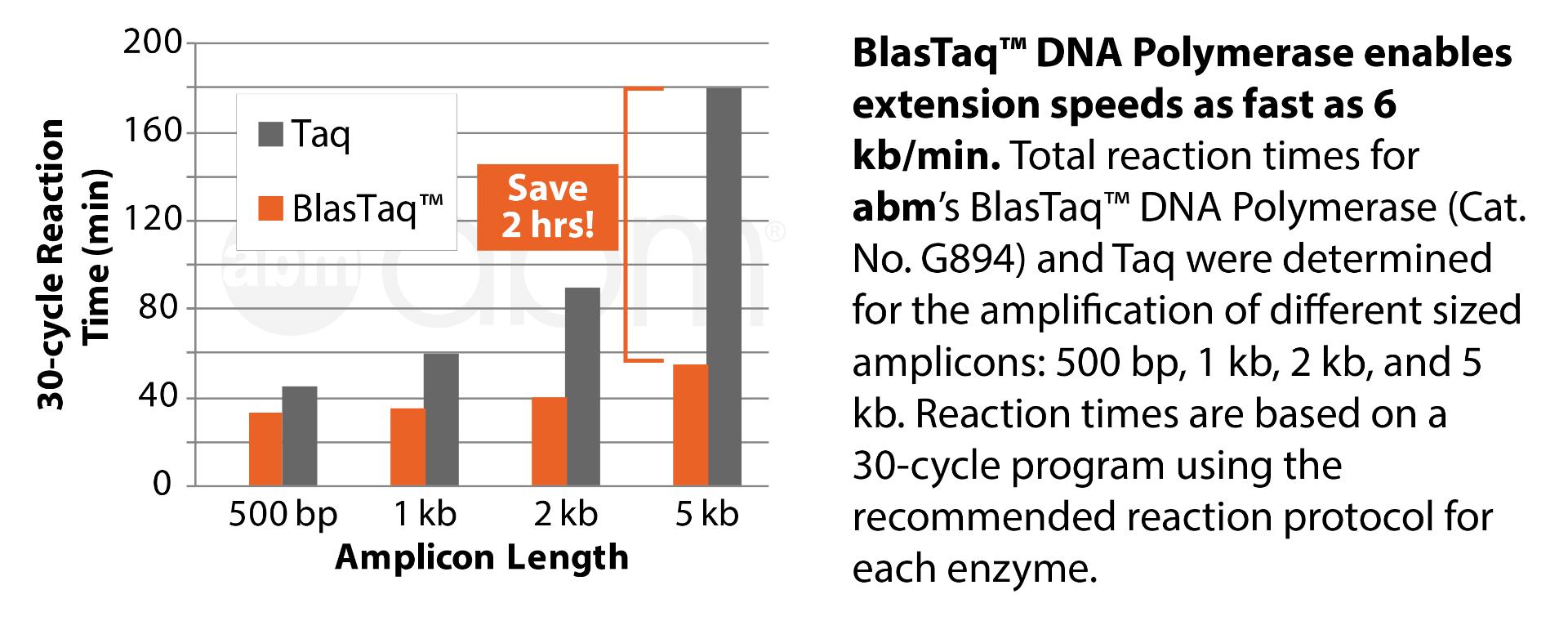 G894 Blastaq Dna Polymerase Data1 1 1