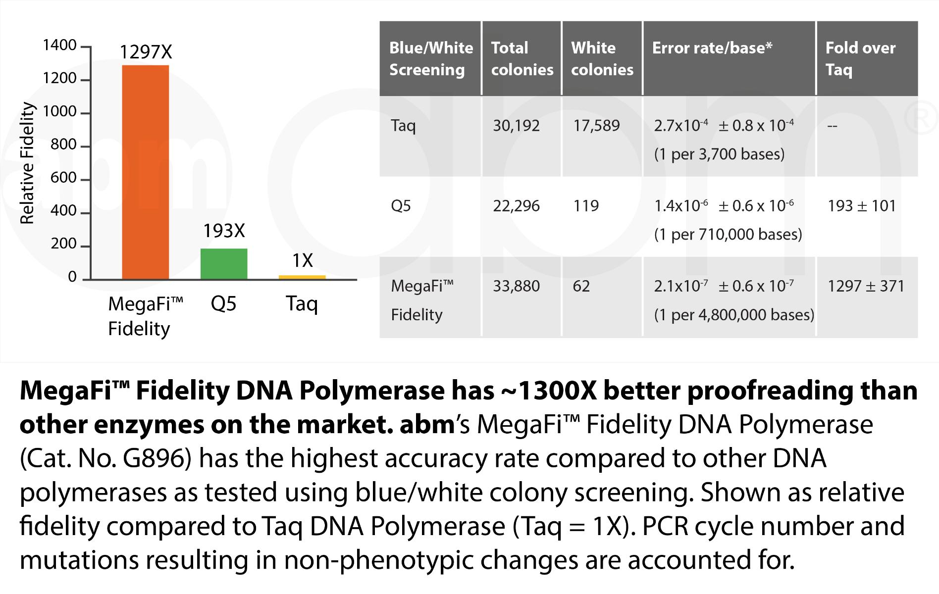 G896 Megafi Fidelity Dna Polymerase Data1 2