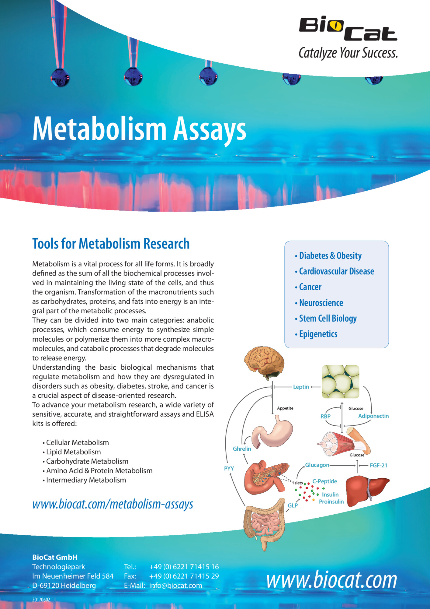 Metabolism_Assays_170602.pdf Preview