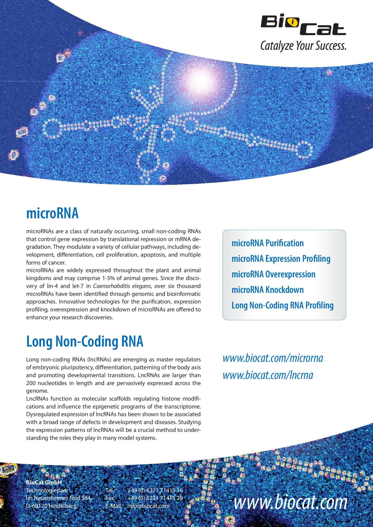 microRNA_lncRNA_20160307.pdf Preview