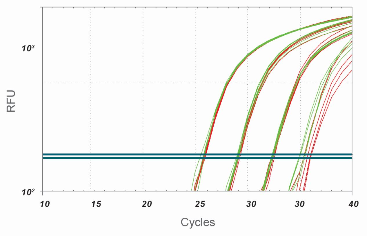 Rapidxfire Taq Polymerase Activation Time