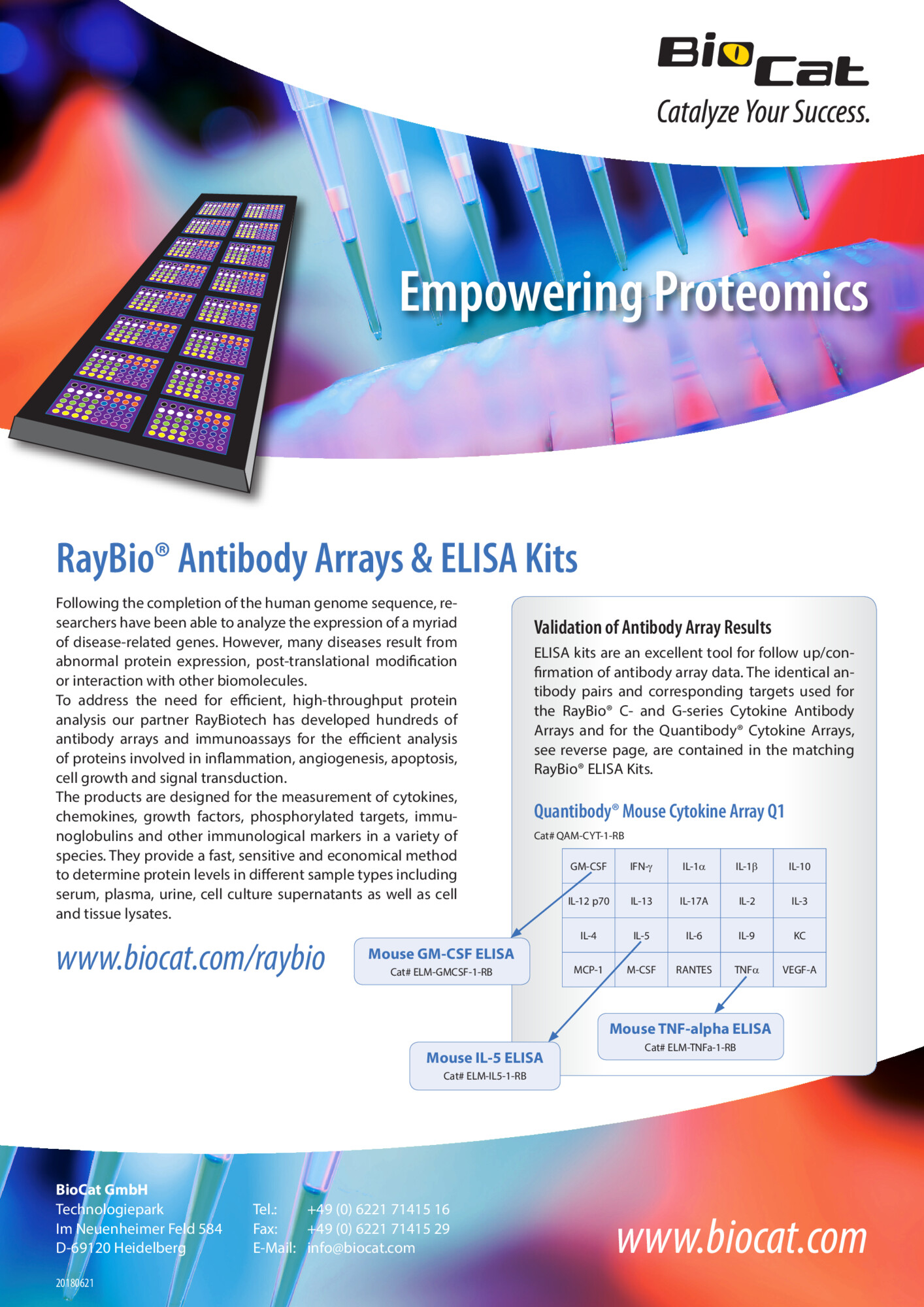 RayBio_ELISAs_ABArrays_180621.pdf Preview